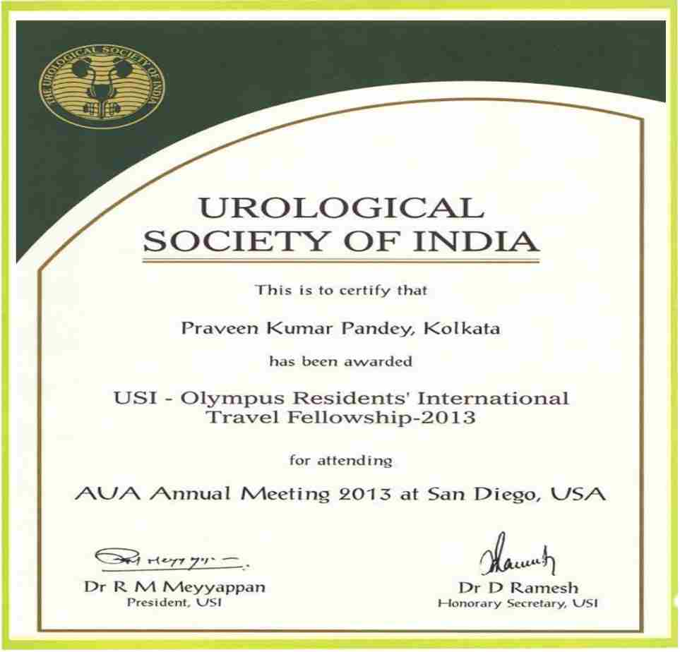 best urologist in lucknow,best urology clinic in lucknow,bladder stone treatment in lucknow,dr praveen urologist in lucknow,kidney cancer treatment in lucknow,kidney specialist in Lucknow,